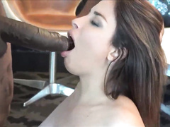 Beautiful busty french arab Beurette blows really hung black bull